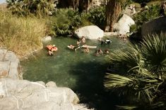 Guadalupe Canyon Oasis FAQs