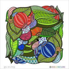 #coloringbook #coloringappforadults #colorcure #adultcoloringbooks #비밀의정원컬러링북 #색칠공부 #healing #therapy #masterpiece #색칠놀이 #어른색칠 #힐링 #치유 #graffiti #graphics #색칠스타그램 #painting #sketch #art #artwork #artist #colorful #wallpainting #flower #geometry #bud
