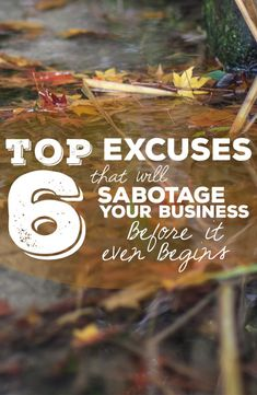 Top 6 Excuses That Will Sabotage Your Business Before It Even Begins | Coastal Conservatory