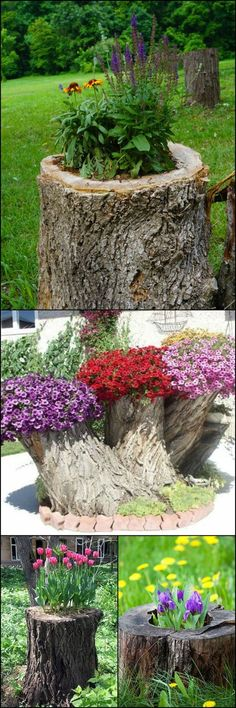 How to Make Your Own Tree Stump Planter http://diyprojects.ideas2live4.com/2015/10/17/how-to-make-your-own-tree-stump-planter/ Removing tree stumps can be a very difficult task. If it's not necessary to get rid of them in your area, why not turn them into planters instead? You can put any plant or flower that you wish. Some people even make fairy gardens with their tree stumps! No matter which plants you choose, you're sure to have a lovely and unique feature in your yard. :)