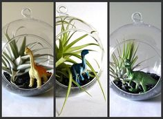 Dinosaur party  - Make terrariums...though not as delicate as these for a kids party