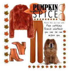 """Pumpkin Spice 3"" by forgottenmelody on Polyvore featuring Maison Margiela, Salvatore Ferragamo, Maison Michel and Dolce&Gabbana"