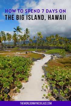The Big Island of Hawaii is truly a paradise, and the best Hawaiian island to really soak up the local vibe and natural environs of Hawaii. After spending two wonderful months on the Big Island, I put together this massive guide and itinerary for spending a week on the Big Island, with all the highlights including things to do, beaches, places to stay and where to eat among other things. The most comprehensive (and free) Big Island guide on the internet. | The World on my Necklace #hawaiiguide Hawaii Travel Guide, Maui Travel, Usa Travel Guide, Travel Usa, Travel Guides, Travel Destinations, Luxury Travel, Green Sand Beach, Travel Articles