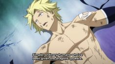 Fairy Tail Sting, Fairy Tail Love, Fairy Tail Anime, Fairy Tail Sabertooth, Laxus Dreyar, Fairy Tail Quotes, Fairy Tail Family, Dragon Slayer, Blue Cats