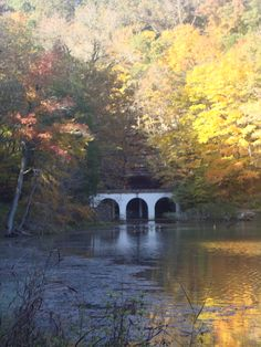 Autumn at Dunbar Cave  Clarksville, TN Love this place. Hung out with friends here too.