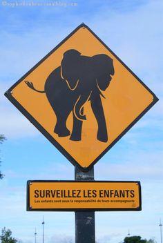 VAN3 pancarte éléphant