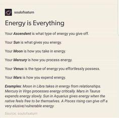 Learn Astrology, Astrology Chart, Astrology Zodiac, Astrology Signs, Lilith Astrology, 2018 Astrology, Astrology Houses, Horoscope Capricorn, Capricorn Facts