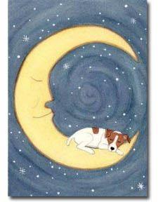 Jack Russell Sleeping on Moon