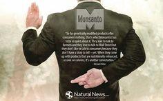Say NO to #Monsanto!   #nogmo #saynotogmo #gmo