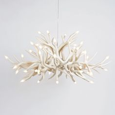 Antler chandelier. Would look beautiful in a lodge or log cabin.