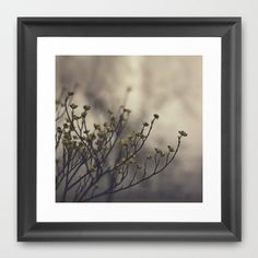 "Spring Fog  by Brandy Coleman Ford    FRAMED ART PRINT / SCOOP BLACK MINI (12"" X 12"")"