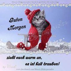 Wochenend Grüße Kuschelig Und Niedlich Humor Pinterest Happy