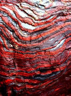 Sedimentary layers with bands of hematite, magnetite (gray-black), and jasper (red) in banded iron formations of northern Michigan, USA.