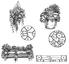 Sunny/Shady Containers - Downloadable Landscape Plans – Sheridan Nurseries
