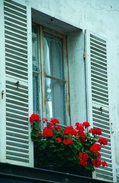 Parisian window...lovely.