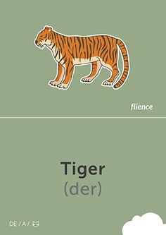 Tiger #CardFly #flience #animals #german #education #flashcard #language