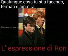 E Harry sembra dire: - Giuro che questo tipo strano io non lo conosco- 😂 Harry Potter Pictures, Harry Potter Tumblr, Harry Potter Jokes, Harry Potter Anime, Harry Potter Fandom, Funny Images, Funny Pictures, Gaia, Harry Potter Wallpaper