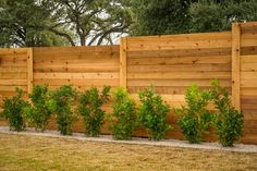 Native, drought-tolerant plants were chosen to line the beautiful cedar privacy fence.