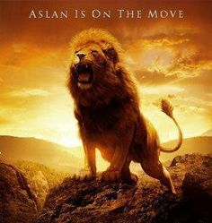Aslan is on the move! Ethiopian girl guarded by three lions after she was kidnapped by 7 men who wanted to marry her.