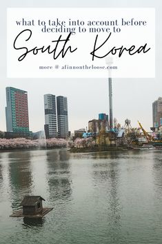 Travel Around The World, Around The Worlds, Seoul Cafe, Living In Korea, South Korea Travel, Jeju Island, Group Travel, Daegu, The Locals