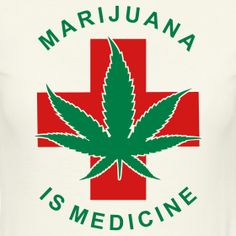 Discussing the medical marijuana protections in place for businesses in states where cannabis is legalized. Learn what the federal government is doing. Medical Cannabis, Cannabis Oil, Cannabis Plant, Marijuana Facts, Marijuana Funny, Medical Photos, Smoking Weed, The Journey, Federal