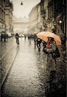 if you know me really well, you would know how much i LOVE rain. i love rain. I Love Rain, No Rain, Autumn Rain, Rain Bird, Rain Storm, Walking In The Rain, Singing In The Rain, Rain Photography, Street Photography