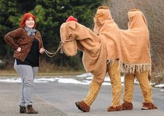 Michele Blanks leads her pantomime camel back to Dereham Theatre Costumes after its safe arrival back home from the Shetlands, where it took part in the Up Helly Aa fire festival. Christmas Stage, Christmas Pageant, Christmas Costumes, Kids Christmas, Halloween Costumes, Joker Halloween, Animal Costumes, Pet Costumes, Joseph Costume