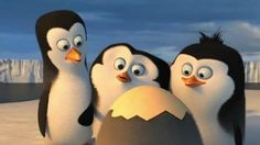 """DREAMWORKS PENGUINS 