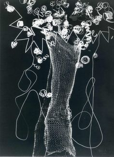 Man Ray, Rayogramme, 1926.