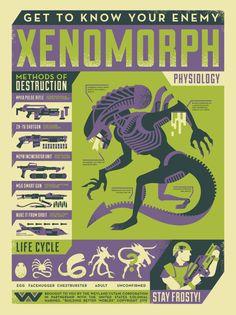Como matar a un Xenomorph #infografia