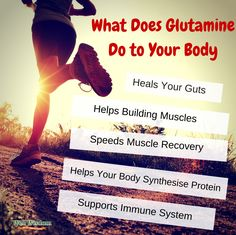 If you're looking for the next awesome nutrient to add to your fitness/muscle-building diet, look no further than glutamine. Not only is this amino acid great for boosting your immune system, but it will improve your health in so many ways! Check these awesome glutamine benefits.