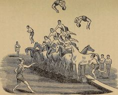 A pyramid complete with horses, acrobaticsand vault,from an 1890s…