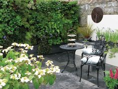 Courtyard garden with green walls
