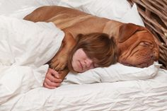 17 Adorable Photos Of Pets Sleeping In Bed With Their Humans