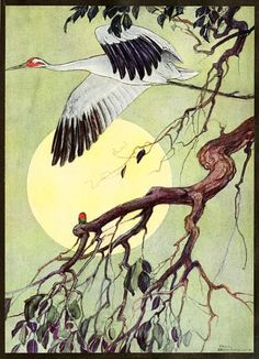 Cranes as spirit animals are ancient symbols of longevity, balance, wisdom, and good fortune. The crane as totem also speaks to the uses of secrecy, devotion, and protection, and the responsibility that comes with protecting and guiding self and others.
