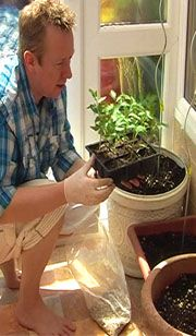 Which plants grow best in containers?~ This is nice to know when creating a veggie potted garden. :)