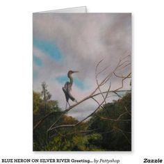 BLUE HERON ON SILVER RIVER Greeting Card