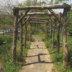 Pergola With Retractable Canopy Product Rustic Pergola, Diy Pergola, Garden Arbor, Garden Gates, Rustic Gardens, Outdoor Gardens, Gothic Garden, Garden Arches, Pergola With Roof