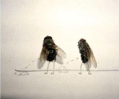 What to do when you are bored at work or at home.. 1. Kill a few Flies 2. Put them in the sun to dry for one hour. 3. Once they are dry, pick up a pencil and paper... Let your imagination flow.