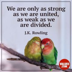 We are only as strong as we are united as weak as we are divided. Rowling Help bring people closer together Unity In Diversity Quotes, Unity Quotes, Meaningful Quotes, Inspirational Quotes, Motivational, Famous Leadership Quotes, Quotes To Live By, Life Quotes, Family Quotes