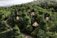 """Nicknamed """"Wild and Wonderful,"""" West Virginia's landscapes are just that and the Dawson Lake Tree Houses are designed to highlight them. The collection of sustainable cabins are perched above Dawson Lake — a 40-foot lake surrounded by meadows, streams, and wetlands."""