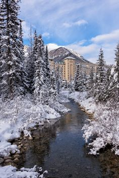 The Fairmont Chateau Lake Louise looking like it's part of a (very wintry) fairytale (Banff, Alberta) Lake Louise Banff, Fairmont Chateau Lake Louise, Travel Sights, Places To Travel, Places To See, Parc National De Banff, Johnston Canyon Banff, Banff Hotels, Gardening