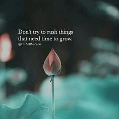Don't rush.  #wisdom #quote #quotes #quotesworthquoting @personalgrowtheu