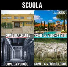 Non possiamo negarlo 🤣🤣🤣 All Meme, Me Too Meme, Paros, Funny Images, Funny Photos, Verona, Italian Memes, Funny Jokes, Hilarious