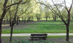 Le parc Balzac - Angers - Photo MNC