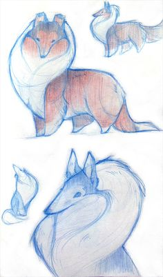 Drawing kawaii animals design reference ideas for 2019 cartoon Cute Animal Drawings, Animal Sketches, Cartoon Drawings, Cute Drawings, Art Sketches, Cute Dog Drawing, Sketch Drawing, Drawing Ideas, Creature Drawings