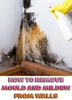 How to Remove Mould and Mildew from Walls #cleaning