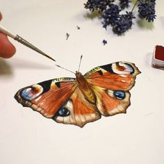 Butterfly Painting, Botany, Biology, Insects, Artsy, Illustrations, Animals, Instagram, Animales