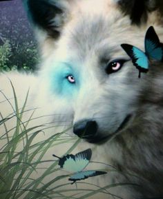 Beautiful......I love the wolf and butterfies!