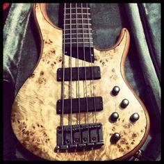 Guitar Bass MTD KZ 5 Bass Guitars, Acoustic Guitars, Electric Guitars, I Love Bass, Custom Bass, Low End, Guitar Stand, Guitar Collection, Close Friends
